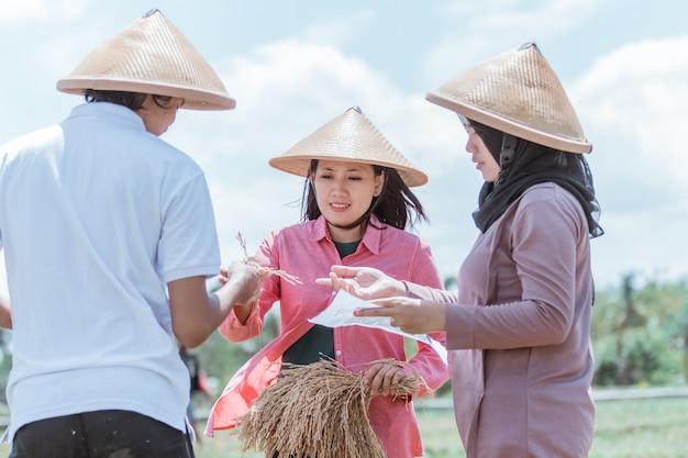 Weibliche und männliche landwirte beobachten die reiskulturen, die sie nach der gemeinsamen ernte auf den feldern ernten