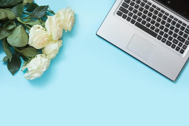Weiblicher desktop mit laptop und weißrose blüht auf blauer tabelle.