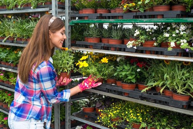 Weiblicher florist, der blumen zum verkauf am blumenladen arrangiert