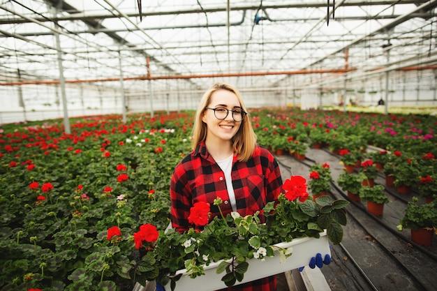 Weiblicher florist, der blumentopf im gewächshaus hält