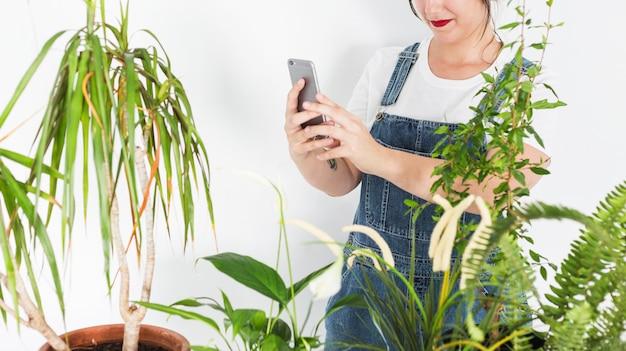 Weiblicher florist, der foto von topfpflanzen auf smartphone macht
