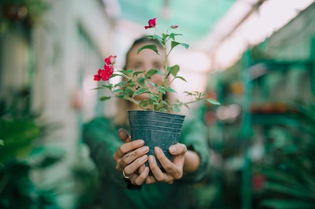 Weiblicher gärtner, der den blühenden topf in der betriebskindertagesstätte gegen unscharfen hintergrund zeigt