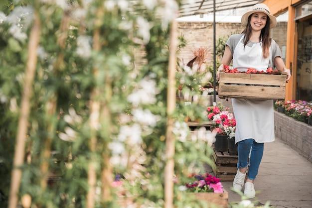 Weiblicher gärtner, der die blühende hölzerne kiste der begonie im gewächshaus hält