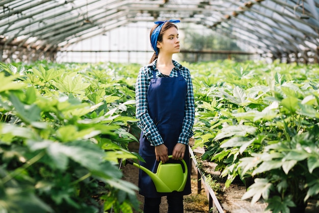 Weiblicher gärtner, der gießkanne mit den anlagen wachsen im gewächshaus hält