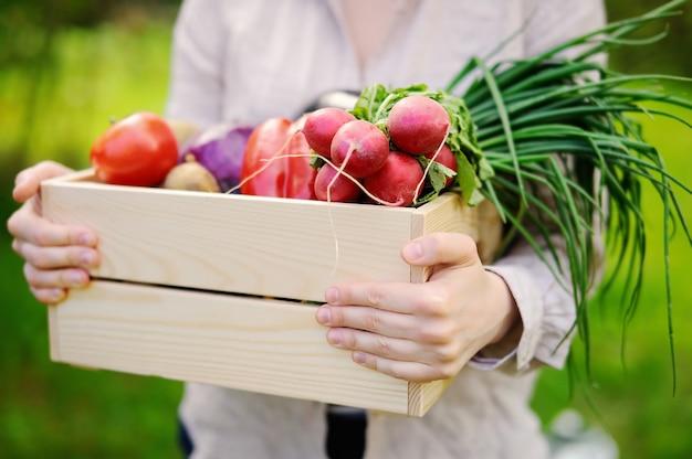 Weiblicher gärtner, der hölzerne kiste mit frischem organischem gemüse vom bauernhof hält
