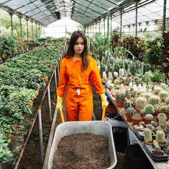 Weiblicher gärtner, der schubkarre mit boden im gewächshaus hält