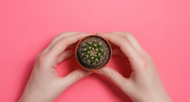 Weiblicher handgriff-grün-kaktus im topf auf rosa pastellfarbhintergrund