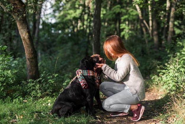 Weiblicher inhaber, der ihren labrador-hund im wald sich interessiert