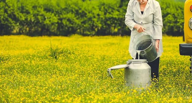 Weiblicher landarbeiter, der milch in einen metallischen behälter in der bauernhofzone hinzufügt