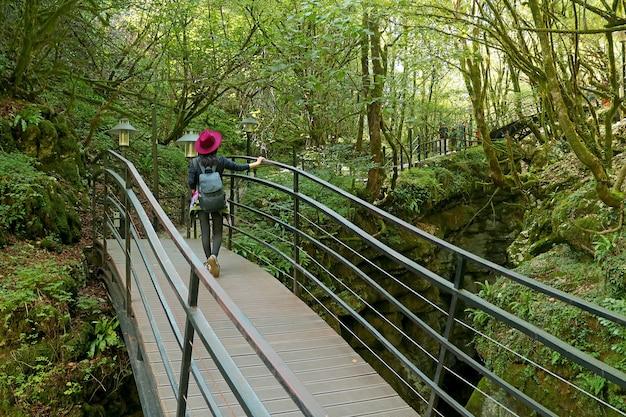 Weiblicher wanderer, der auf der hölzernen brücke im nationalpark geht