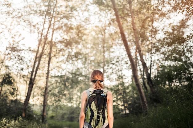 Weiblicher wanderer, der im grünen wald steht