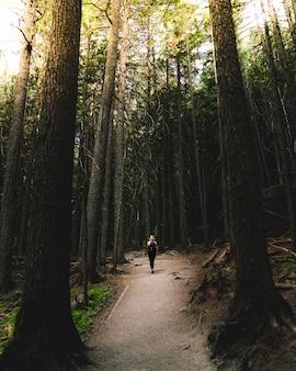 Weiblicher wanderer in einem rucksack, der auf einer schmalen straße im wald geht