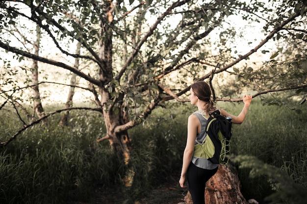 Weiblicher wanderer mit dem rucksack, der nahe dem baum steht
