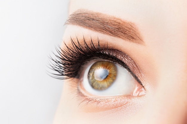Weibliches auge mit den langen wimpern, schönem make-up und hellbrauner augenbrauennahaufnahme. wimpernverlängerung, laminierung, microblading, kosmetologie, ophthalmologiekonzept. gute sicht, klare haut