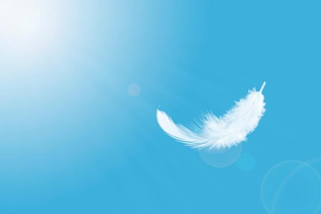 Weich flauschig eine weiße feder, die im himmel schwebt.