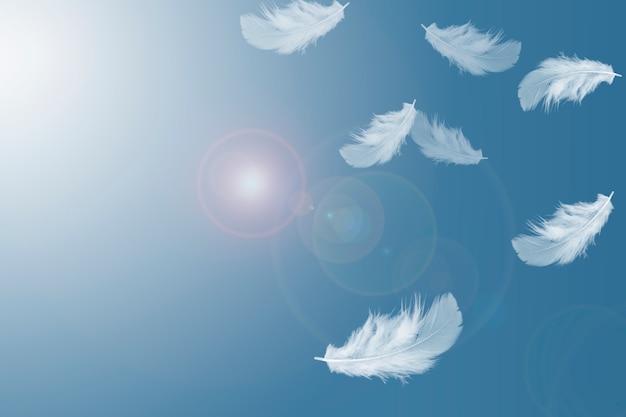 Weiche weiße federn, die in den himmel schwimmen