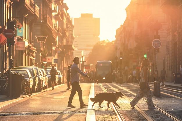 Weicher fokus auf mann machen sie einen spaziergang mit hunden während des sonnenuntergangs in bordeaux stadt