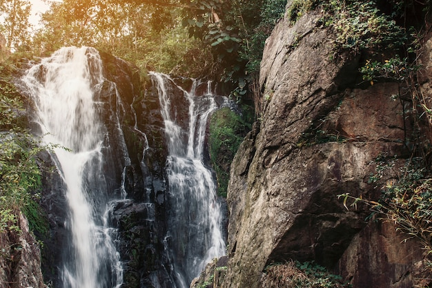 Weiches wasser des stromes im naturpark, schöner wasserfall im regenwald.