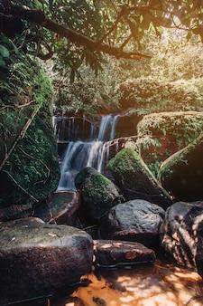 Weiches wasser des stromes im naturpark wiman thip waterfall, schöner wasserfall im regenwald