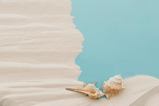 Weichtiere auf sand mit geripptem effekt