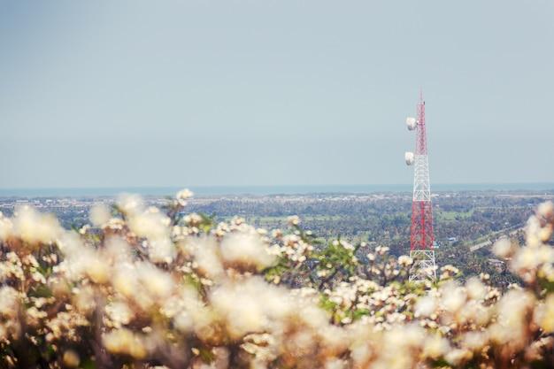 Weichzeichnung telekommunikationsturm mit unschärfeblumenvordergrund