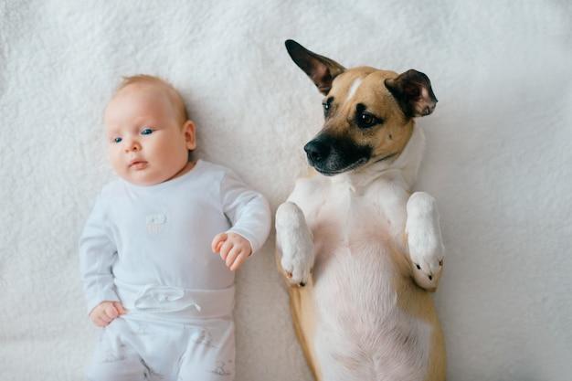 Weichzeichnungsporträt des neugeborenen babylebensstils, das an zurück zusammen mit lustigem welpen auf beige abdeckung liegt.