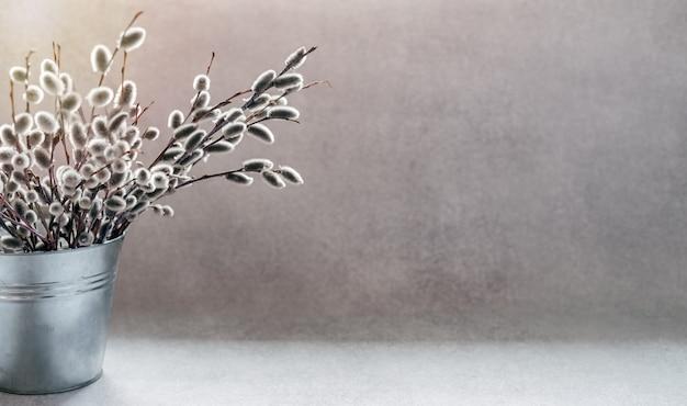 Weidenkätzchenzweige in einem dekorativen eimer