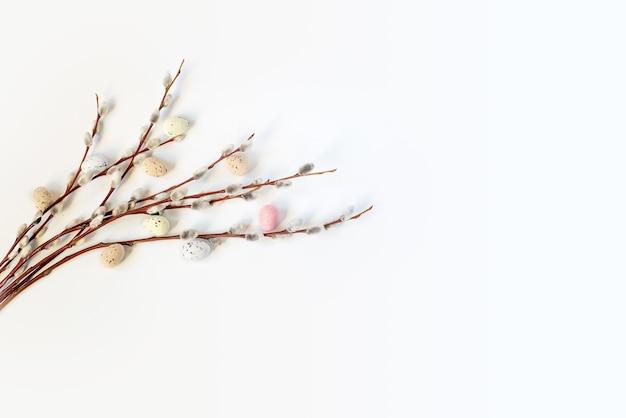 Weidenkätzchenzweige und bunte ostereier mit kopienraum auf weißem hintergrund