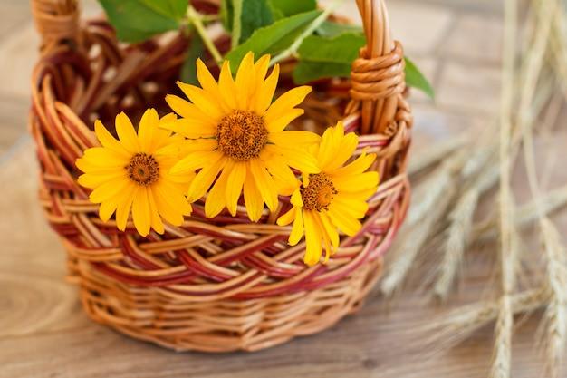 Weidenkorb mit gelben blumen und ährchen aus weizen auf holzbrettern. geringe schärfentiefe. konzentrieren sie sich auf blumen. ansicht von oben.