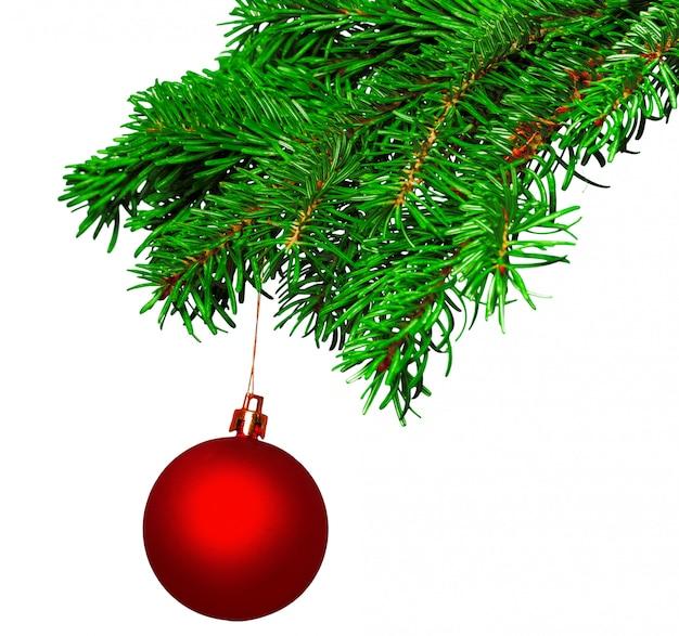 Weihnachtsball auf dem tannenzweig lokalisiert auf weißem hintergrund