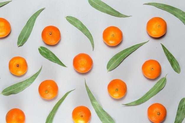 Weihnachtsbaum aus eukalyptusblättern und mandarine flach urlaub konzept kopieren raum