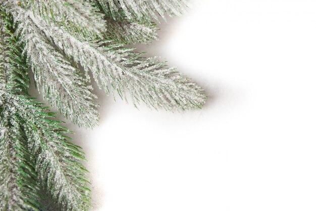 Weihnachtsbaumast auf blau