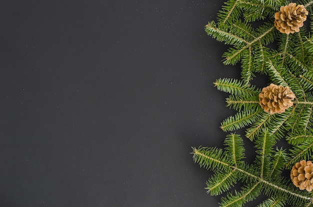 Weihnachtsbaumast, kiefernkegel lokalisiert auf schwarzem, flachfahnenmodell. weihnachten neues jahr