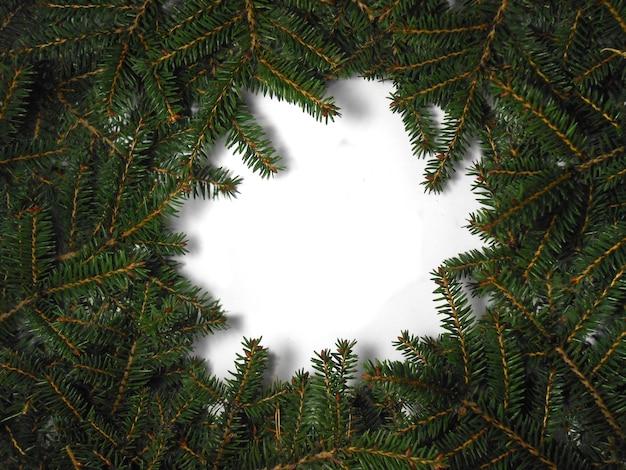 Weihnachtsbaumkonzept. layout aus christbaumzweigen mit kopierraum. flach liegen.