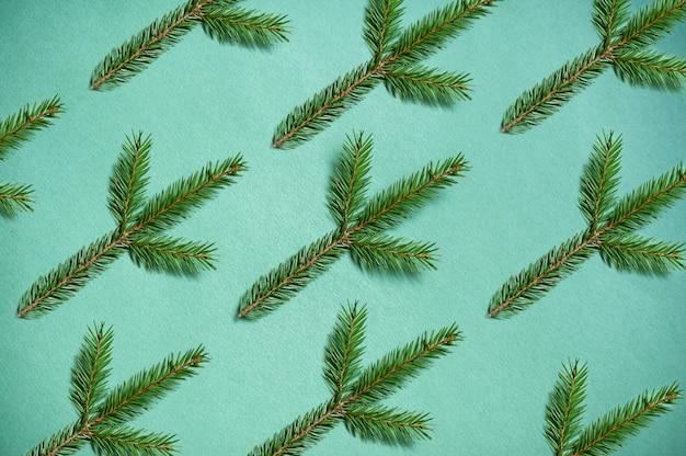 Weihnachtsbaumzweige auf einem grün