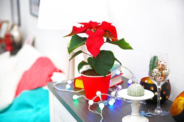 Weihnachtsblumen weihnachtsstern und dekorationen im regal mit weihnachtsschmuck, auf hellem hintergrund