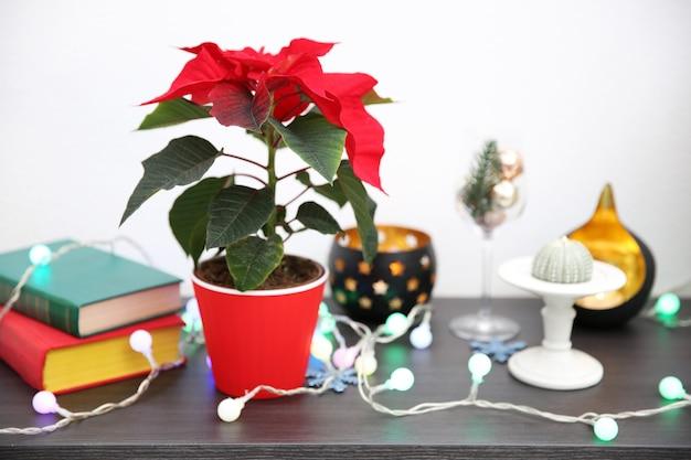 Weihnachtsblumen weihnachtsstern und dekorationen im regal mit weihnachtsschmuck, auf heller oberfläche