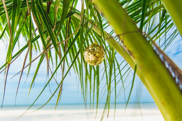 Weihnachtsdekoration auf der palme auf dem strand am sonnigen tag