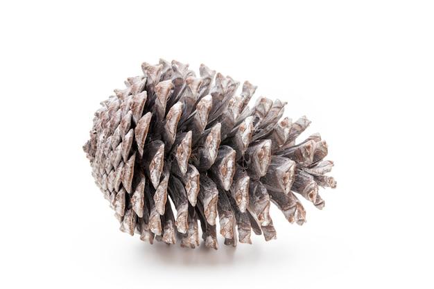 Weihnachtsdekoration, tannenzapfen isoliert