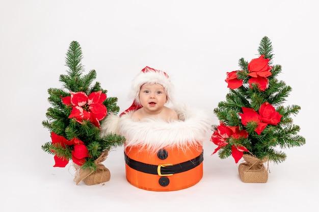 Weihnachtsfoto ein kleines kindermädchen, das in einer weihnachtsmütze in einem korb nahe den weihnachtsbäumen sitzt