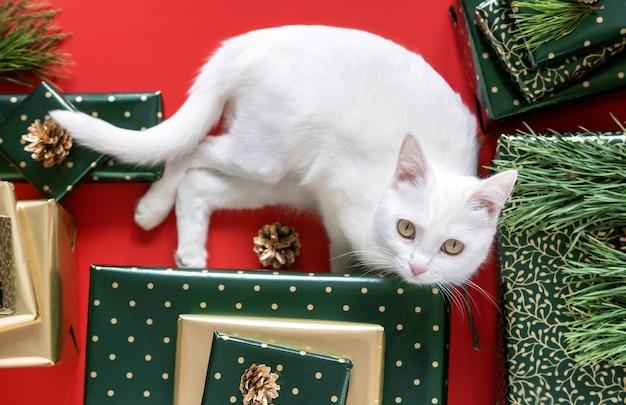 Weihnachtsgeschenke in grünem und goldenem papier und katze