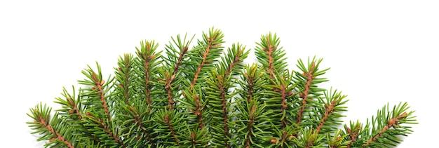 Weihnachtsgrünrahmen lokalisiert auf weißem raum. vorlage für weihnachtskarte.