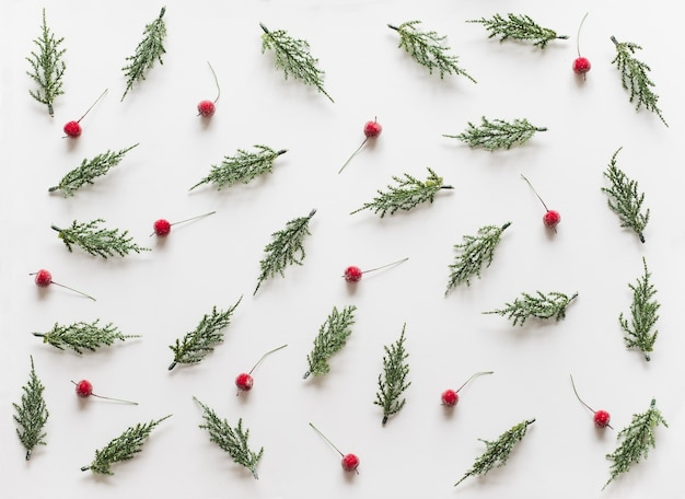 Weihnachtshintergrund mit tannenzweigbaum tannenzapfen