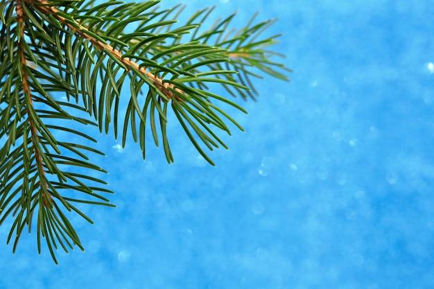 Weihnachtskarte auf blauem hintergrund mit bokeh-zweig des weihnachtsbaumes