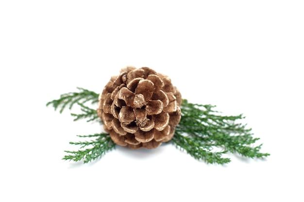 Weihnachtskegel mit zweigen des weihnachtsbaumes