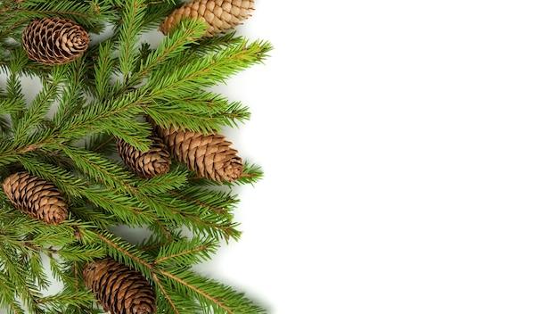 Weihnachtskonzept auf einem weißen hintergrund von weihnachtsbäumen und -kegeln.