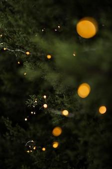 Weihnachtskonzept mit schönem baum und lichtern
