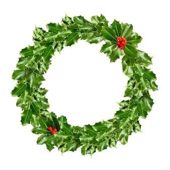 Weihnachtskranz der stechpalme - grünes blatt isoliert