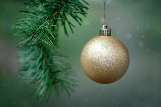 Weihnachtskugel auf einem tannenbaum