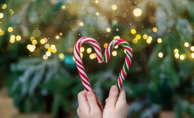 Weihnachtszuckerstangen in den händen eines kindes. selektiver fokus. urlaub.